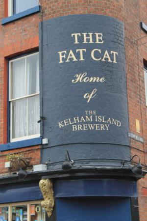 fat-cat-sheffield-1